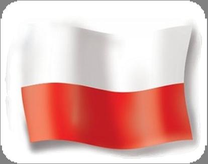 Znalezione obrazy dla zapytania flaga polski png